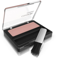 CoverGirl Cheekers Blendable Powder Blush, Brick Rose 0.12 oz [022700002313]