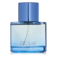 Blue by Kenneth Cole EAU DE TOILETTE 3.4 oz [608940563687]